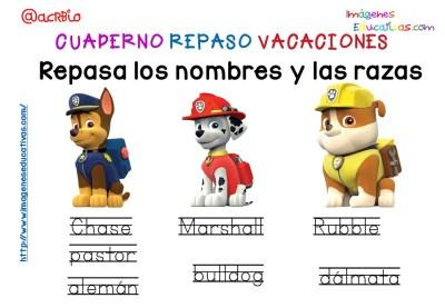Cuderno de repaso para vacaciones Patrulla Canina (11)