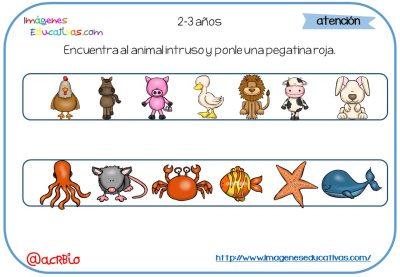 CUADERNO VACACIONES INFALTIL 2-3 AÑOS (2)