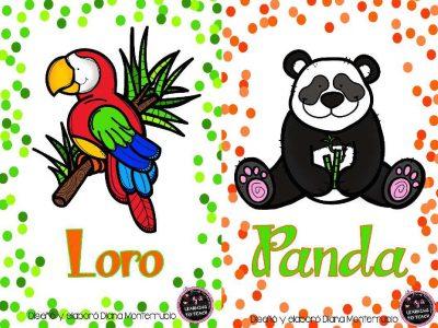 Tarjetas De Animales De Zoológico Y Hábitats (10)