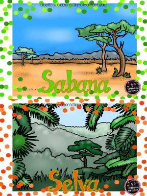 Tarjetas De Animales De Zoológico Y Hábitats (2)