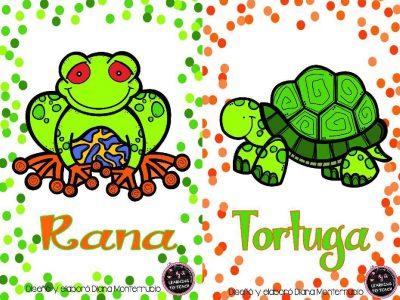 Tarjetas De Animales De Zoológico Y Hábitats (6)