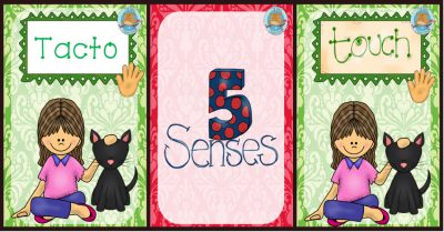 5-sentidos-portada