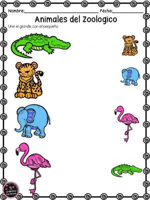 actividades-animales-de-zoologico-25