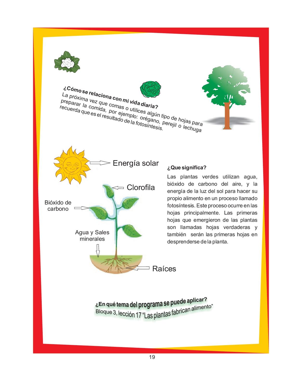 Manual-de-experimentos-de-la-ciencia-divertida-024 - Imagenes Educativas