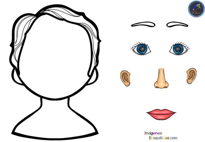 Divertidas Fichas Para Conocer Las Partes De La Cara Imagenes Educativas
