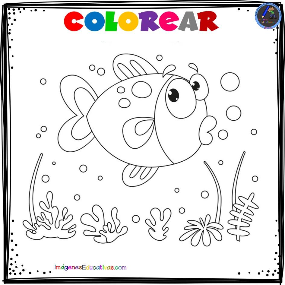 Mi cuaderno para colorear ANIMALES - Actividades de Primaria