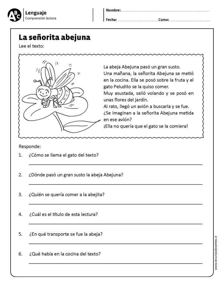 40 Ejercicios de comprensión lectora para primaria y primer grado –  Imagenes Educativas