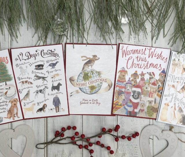 Christmas Cards For Dog Lovers In Aid Of Charity