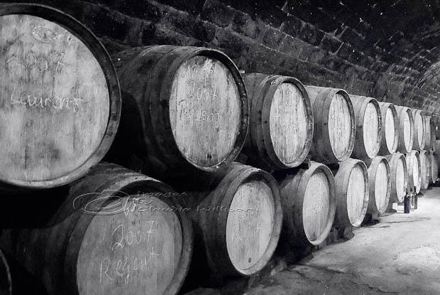 wine, barrels, cellar, vintage, texture