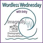 Wordless Wednesday @ ImagesByCW