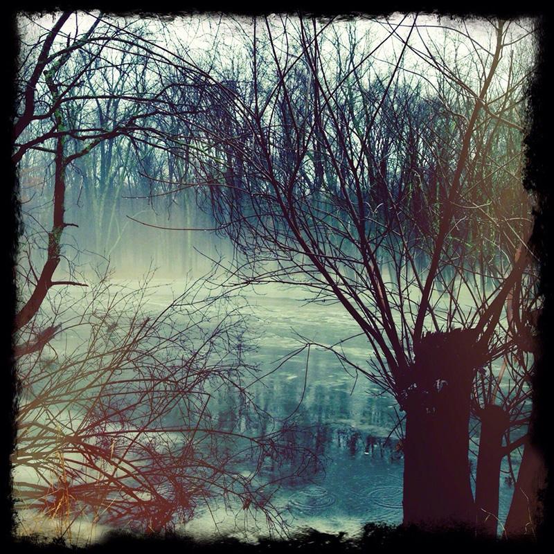 fog, mysterious, fanasy