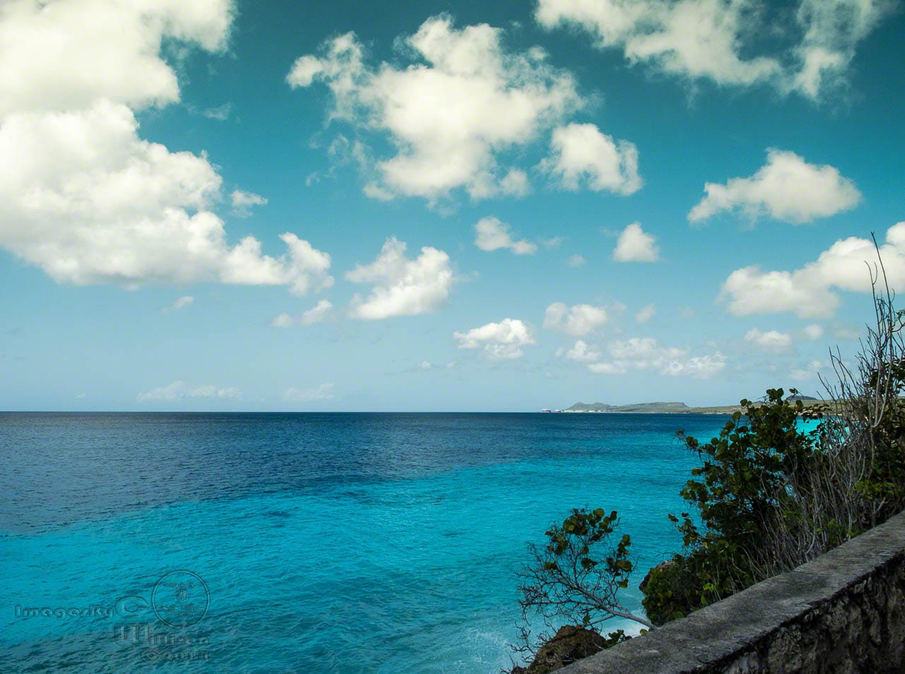 Bonaire, island, tropical, Caribbean