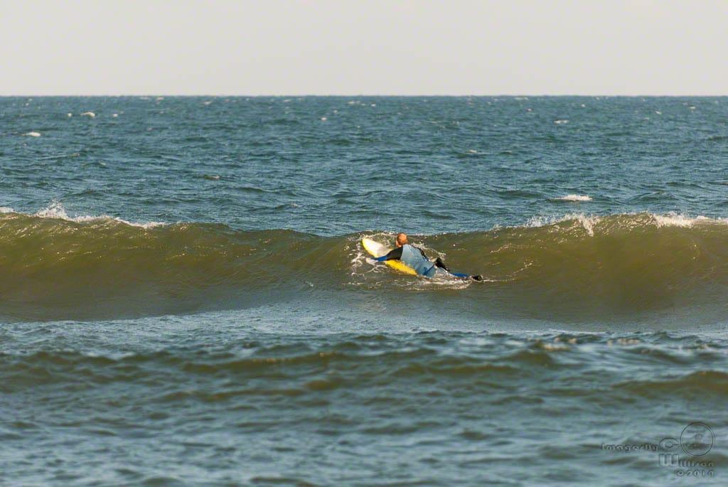 David surfin'