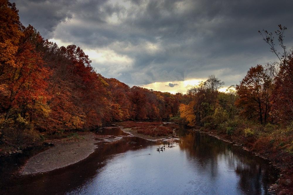 Fall @ Whippany River