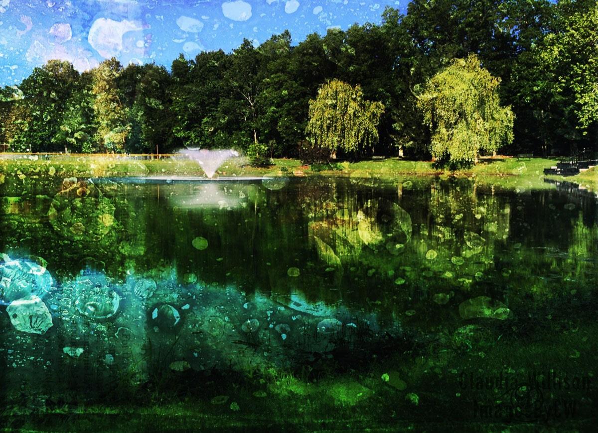 Malapardis, park, pond