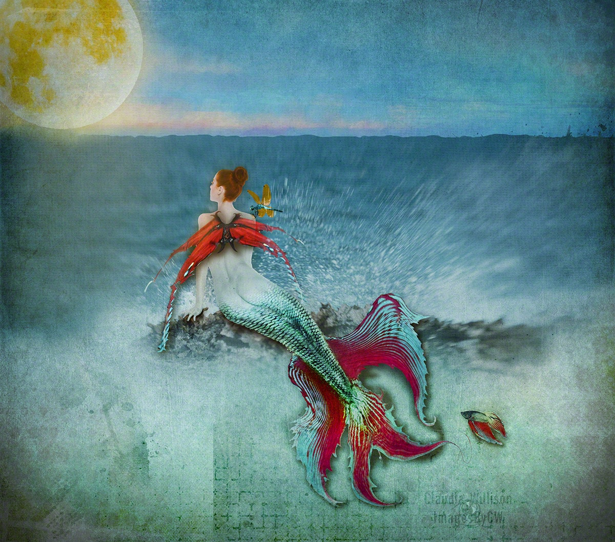 mermaid, composite, photoshop