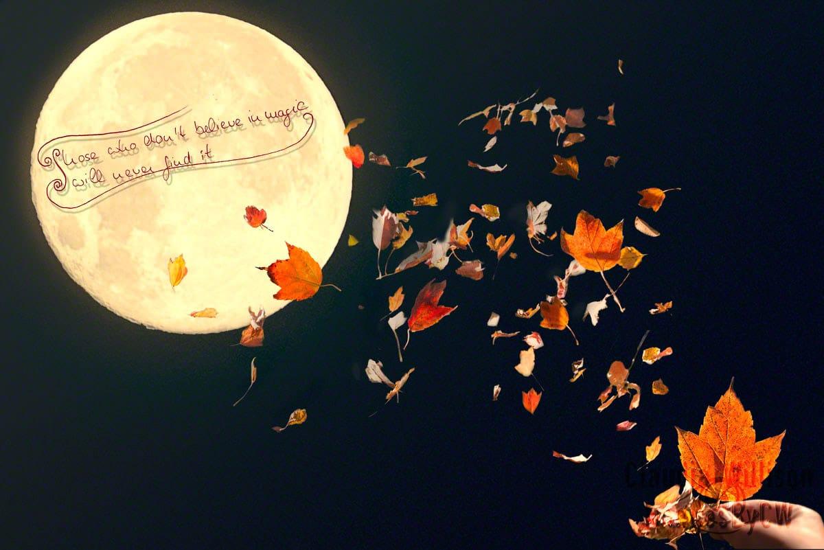 quote, moon, magic