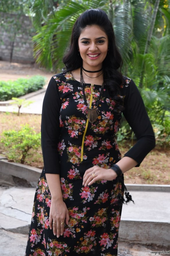 sreemukhi at nenu nanna naa boyfriends teaser launch845679