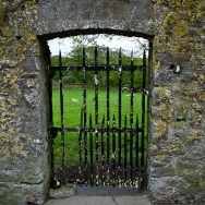 the rusted gate