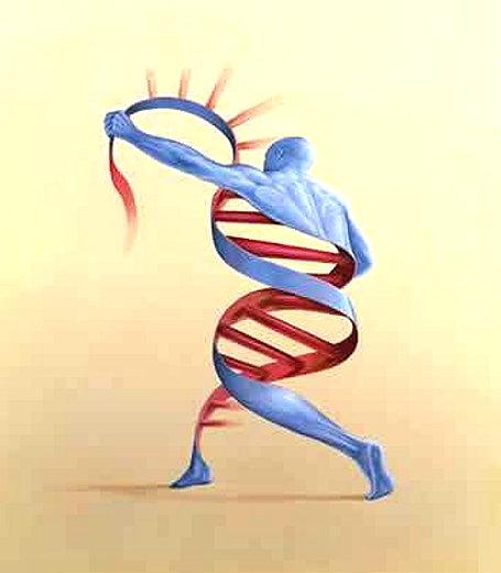 Resultado de imagem para imagens sobre livros sobre epigenética