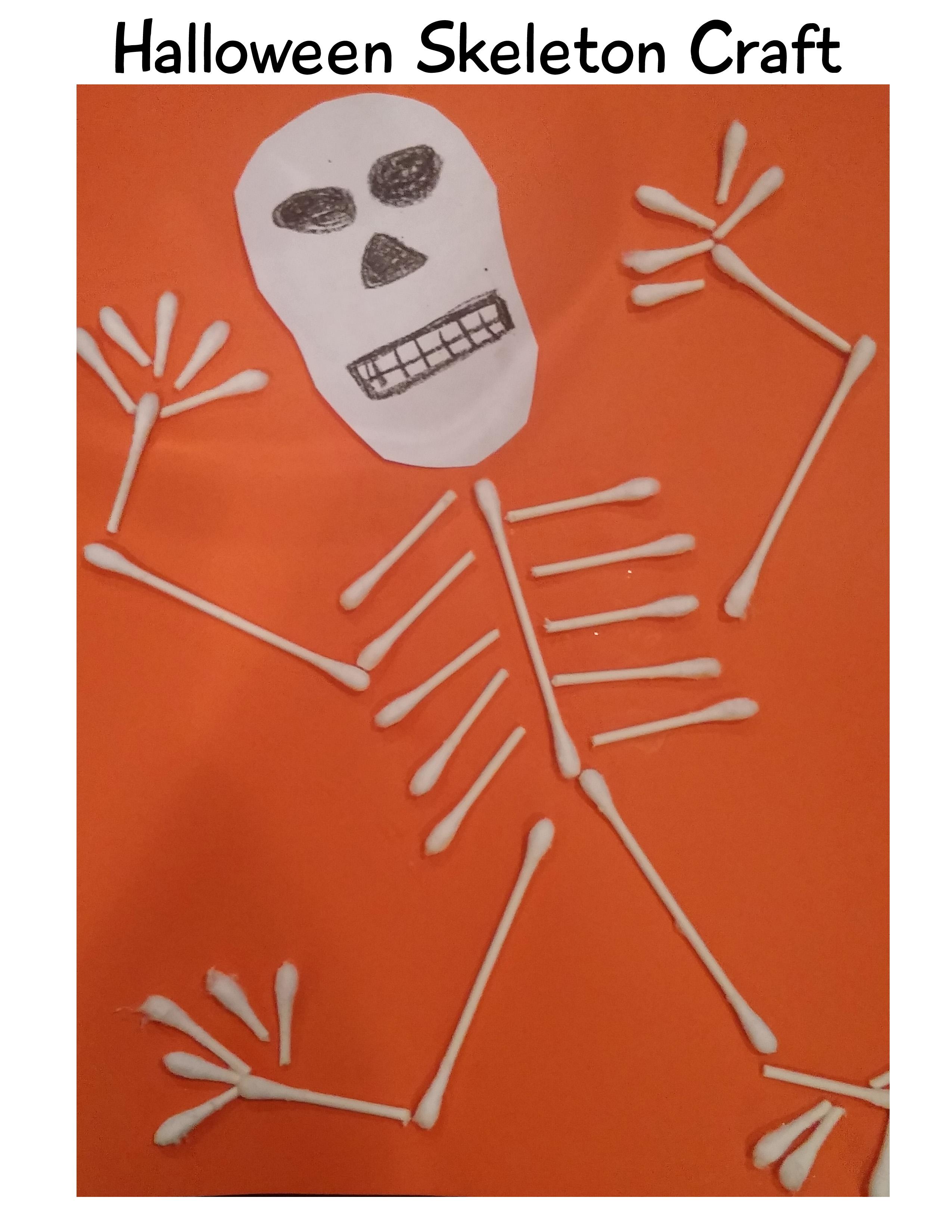 Skeletal System Worksheet Grade 2