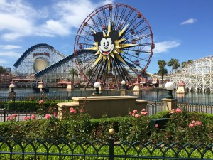 How to Save Hours Planning Your Disney Vacation