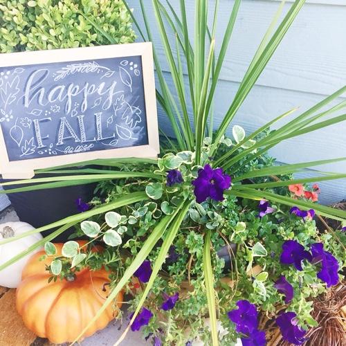 Easy Home Decor Ideas for Fall