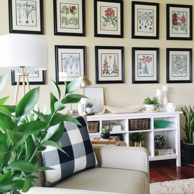 How to make an easy DIY botanical gallery wall