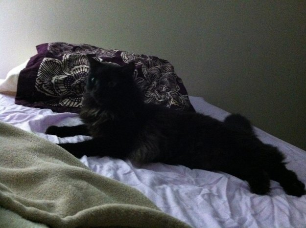 poncho on bed