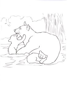 bear-coloring-page