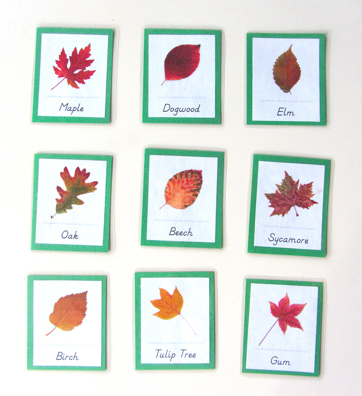 Autumn Leaves Quiet Book Amp Fall Homeschool Unit