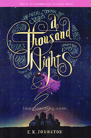 Sesame Place and Disney Books A Thousand Nights Johnston