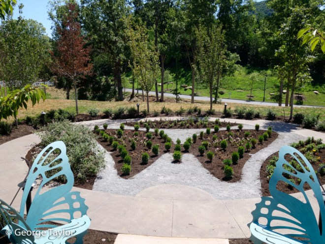 Dollywood-DreamMore-Pool-Activities-13