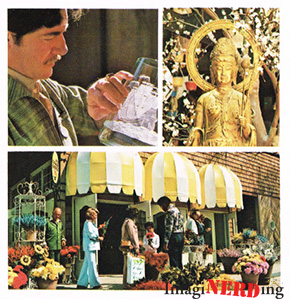 lake-buena-vista-brochure-the-village