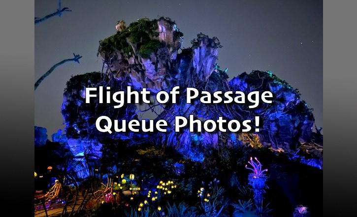 Flight of Passage Queue Photos