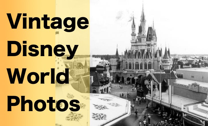 Vintage Disney World Photos!