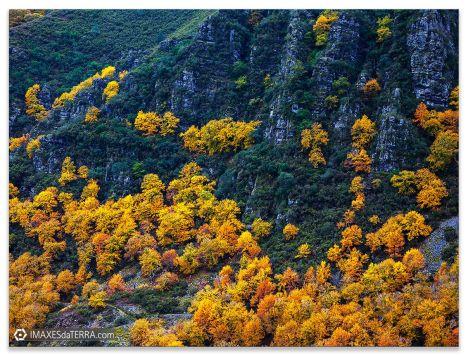 Serra  do  Caurel no outono, Comprar fotografía Galicia Serra  do  Caurel Outono Natureza Galega Decoración Paisaxes