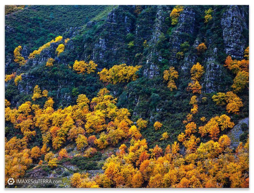 Serra do Caurel en Otoño, Comprar fotografía Galicia Serra do Caurel Otoño Naturaleza Gallega Decoración Paisajes