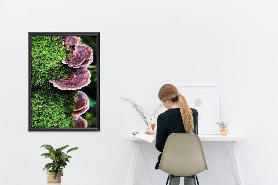decoración-oficina-fotografías-galicia