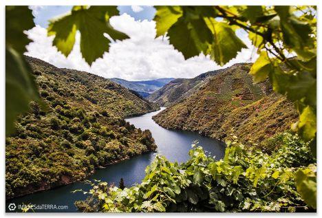Riberia Sacra -Fotos de Galicia para decorar