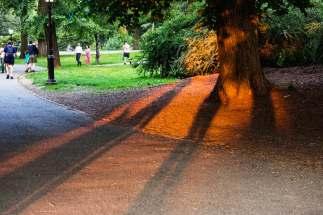 Saturday Evening - Shadows.