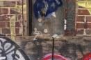 Saturday - Wine Glass and graffiti, Weehawken St