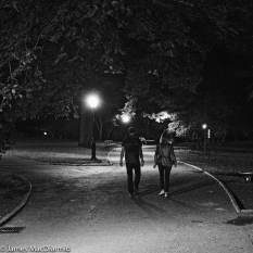 star night - Central Park