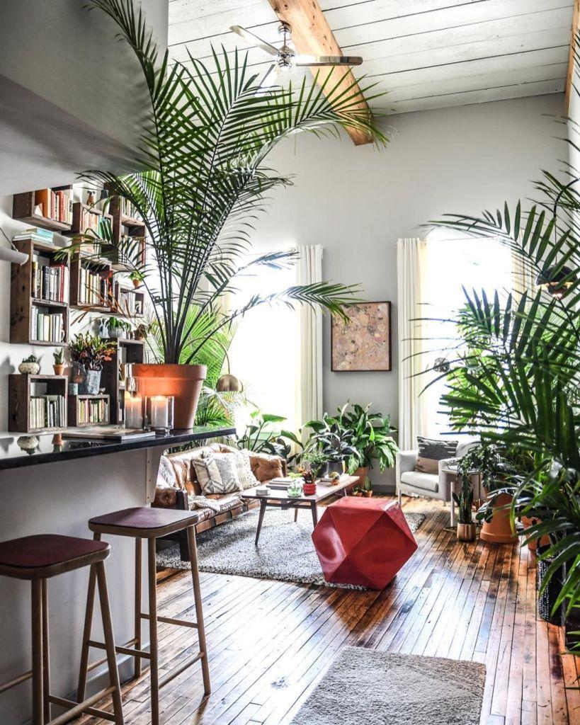 Decoración con plantas de interior 1