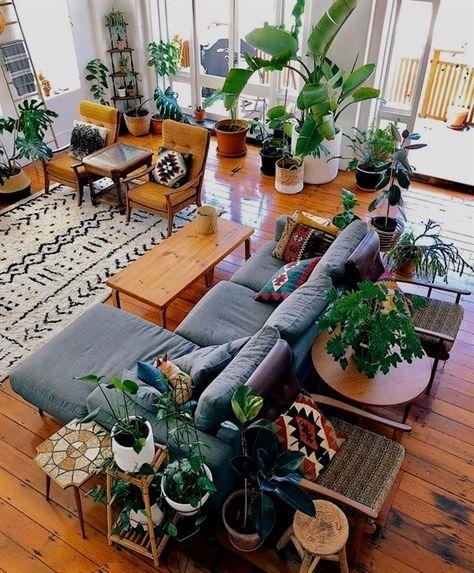 Decoración con plantas de interior 2