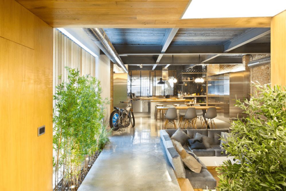 Decoración con plantas de interior 3
