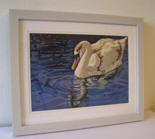 Framed Swan and it's Reflection