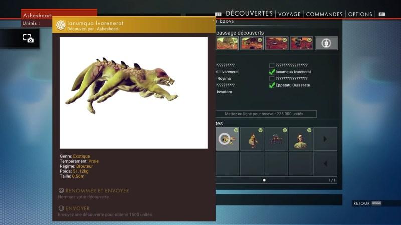 La faune découverte