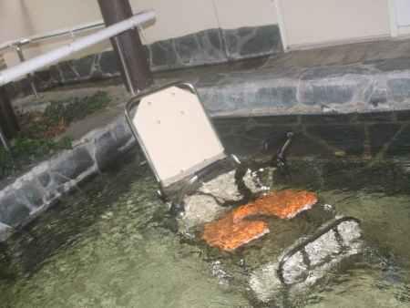 那須高原【ガストホフ エール】無段階リクライニングシートのシャワーキャリー