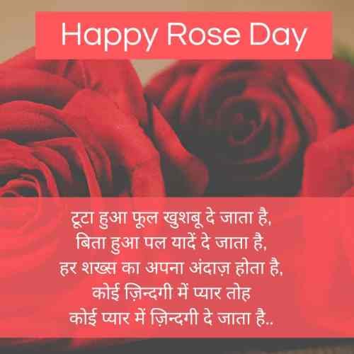 Happy Rose Day Images in Hindi